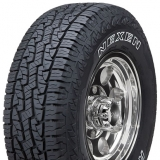 Шины Roadstone Roadian AT Pro RA8